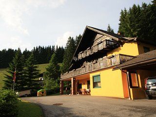Comfortable Mansion in Wolfsberg near Ski Area