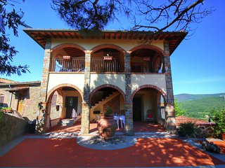 Attractively furnished apartment on a large estate in the Chianti region