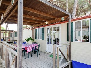 Detached chalet in a green pine forest near the Adriatic sea