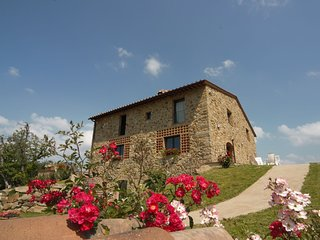 Cozy Holiday Home in Borgo San Lorenzo Tuscany with Garden