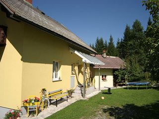 Spacious Holiday Home in Tropolach near Ski Area Nassfed