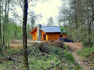 Modern, wooden chalet with wood burning stove, in the forest