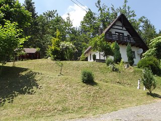 Detached house at 100m distance of the lake, surrounded by beautiful nature and
