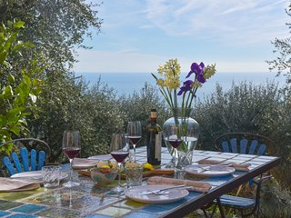 Charming Villa in Flower Riviera Liguria with terrace