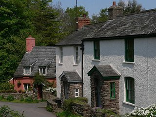 Rural cottage with lovely features such as a warm fireplace, situated in Aber
