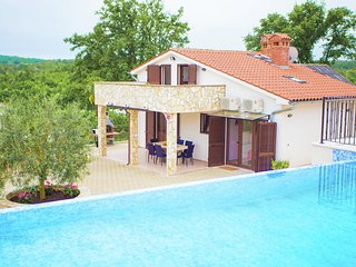 Modern Villa with Pool in Rakotule Croatia