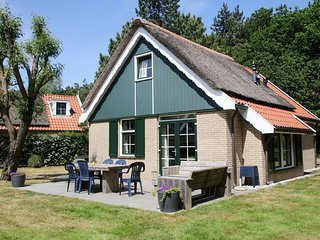 Restyled country house with dishwasher, on Texel, sea at 1km