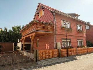 Beautiful Apartment in Ilsenburg Harz near Ski Area