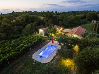 Beautiful holiday home with private pool, nice guesthouse, garden, terrace, BBQ