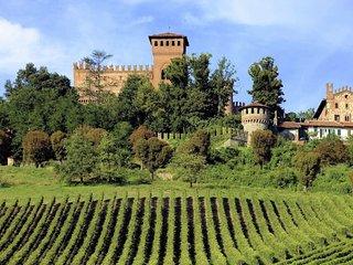 Apartment in a famous Monferrato Castle for the wonderful vineyards