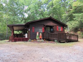 Peaceful 2 bedroom/ 2 bathroom  'Bear Necessities' Cabin