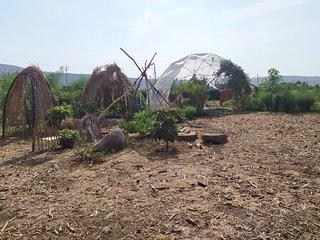 Organic farm hosting