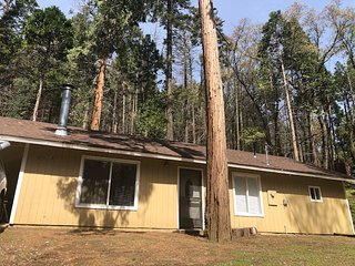 Sequoia National Forest CabinM