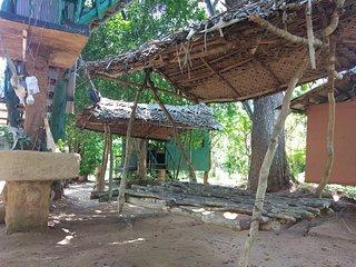 Ranger's Yala tree house