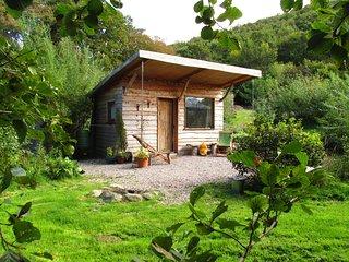 Romantic, secluded cabin - Cabin Tal y Fan