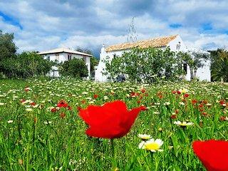 Cochichos Farm Country Houses - Amendoa House (Duplex)