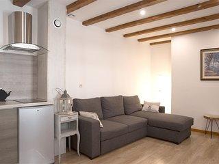 Appartement Shaaby F2 de charme 5 personnes hyper centre de Colmar