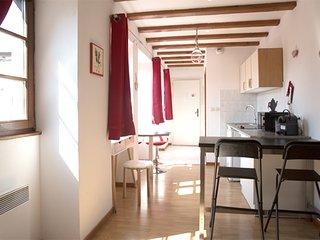 Appartement tout equipe Green 4 Personnes hyper centre de Colmar