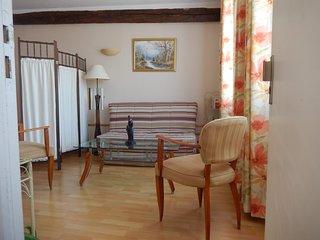 Maison au ceour d'Illiers Combray, calme et verdure / Peacefull & greenery house