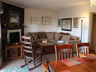 Deluxe 2 Bedroom Condo Overlooking the Blue Ridge