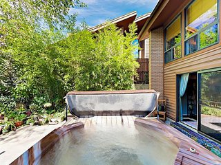 Skier's retreat w/ private hot tub & wood fireplace - dogs welcome!