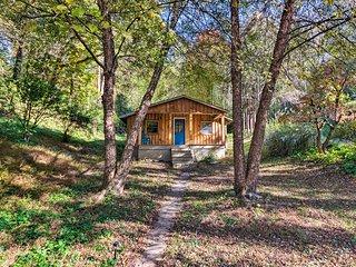 NEW! Asheville Cabin 5 Mi to River Arts District!