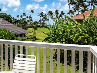 Aloha Ocean View Poipu! Full Kitchen, Flat Screen TV, WiFi, Private Lanai