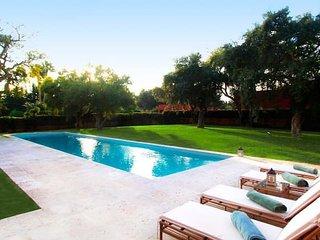 Amazing villa with swimming-pool