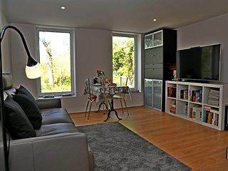 Nice apartment in Cognac & Wifi