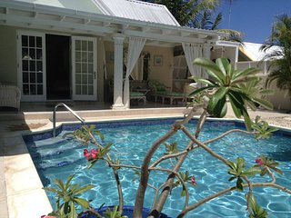Beautiful Quiet Private Villa, Garden, Pool - Barbados