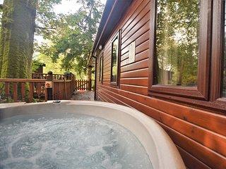 76627 Log Cabin situated in Windermere (1mls N)