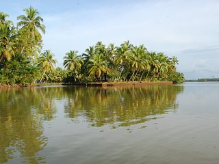 Coconut Island, Guruvayur, Thrissur - An exclusive private island in Kerala.