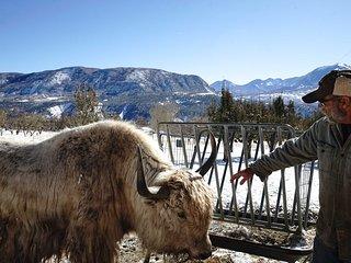 NEW! Yak Sanctuary: An Animal & Wine Lovers Retreat