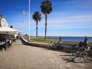 Precioso estudio con terraza frente al mar.Disfruta del sol en 1ª linea de playa