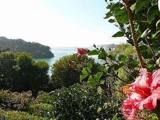 Sea View Beauty - Waiheke Holiday Apartment