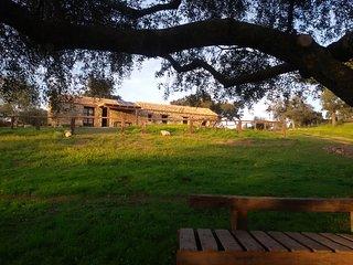 Casa de la Mina Romana en plena naturaleza privada