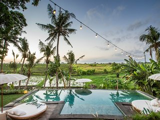 Majestic, Spacious and Ecofriendly villa in ricefields of Canggu