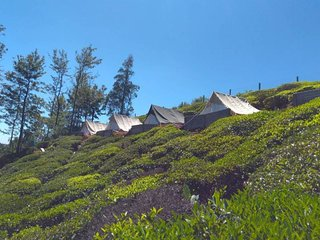 Swiss Tents in Ooty, Tn