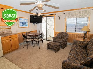 ML356 1BR/1BA Mountain View - Next to Village - FREE Wi-Fi and Parking