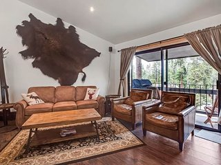 Family friendly condo w/rustic mountain ambiance, shared hot tub- walk to lifts!