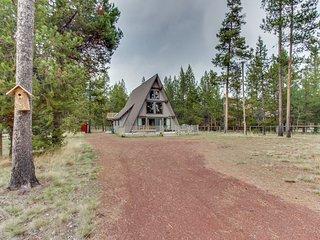 Dog-friendly cabin w/ bright interior - spacious yard, borders Nat'l Forest!