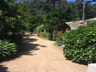 Quinta da Flora