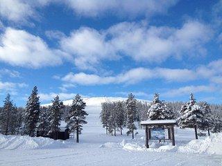 Scandinavian Mountain Cabin Resort Näsfjället