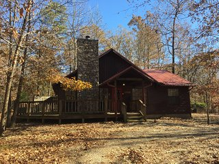 2 bed2 bath cabin-forest setting. Hot tub! Wifi! Dog Pen! Timed Code Smart Lock
