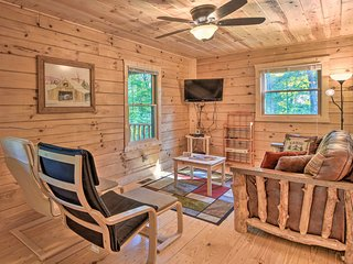 NEW! Secluded Cabin w/Deck, 15 Min to Dwtn Murphy!