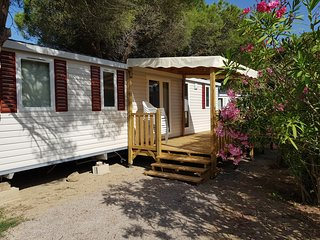 Mobil-home 3 chambres climatise