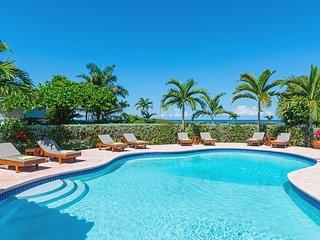 Sunspot Spot Villa - Charming 6 Bedroom Beach Front Villa Jamaica