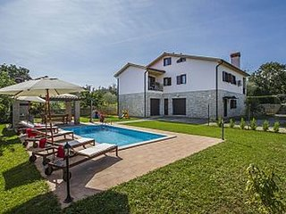Villa with pool H(8+2) - Nedescina