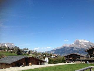 Authentique petit Chalet proche des pistes | Wi-Fi GRATUIT + Casiers à ski