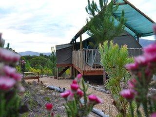Otium Oasis Glamping & Camping